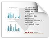 iCCM Report