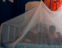 Mother and child lay in bed under a mosquito bed net.